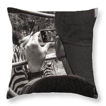 Zebra Modeling Throw Pillow by Sherry Davis