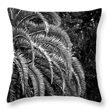 Throw Pillow featuring the photograph Zebra Palm by DigiArt Diaries by Vicky B Fuller