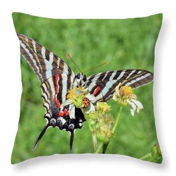 Zebra Swallowtail And Ladybug Throw Pillow