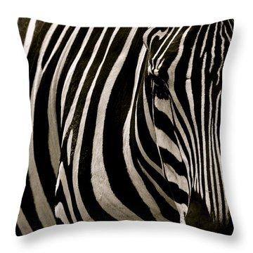 Zebra Up Close Throw Pillow