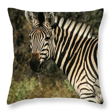 Throw Pillow featuring the painting Zebra Watching by Karen Zuk Rosenblatt