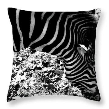 Zebra2 Throw Pillow