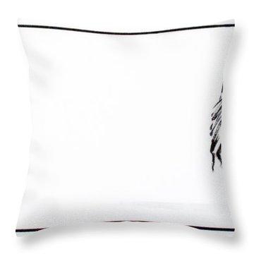 Zebra3 Throw Pillow