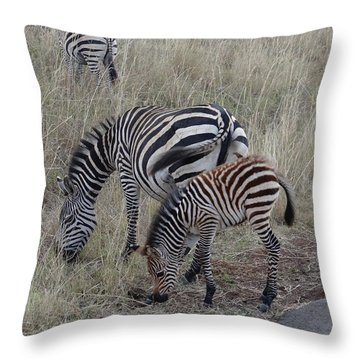 Zebras In Kenya 1 Throw Pillow