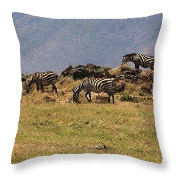 Zebras In The Ngorongoro Crater, Tanzania Throw Pillow by Aidan Moran