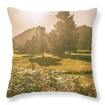 Zeehan Afternoon Meadows Throw Pillow