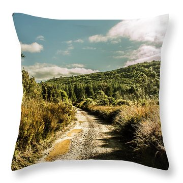 Zeehan Dirt Road Landscape Throw Pillow