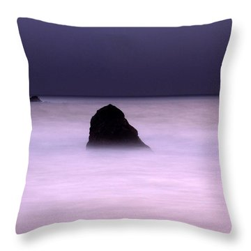 zen Throw Pillow by Catherine Lau