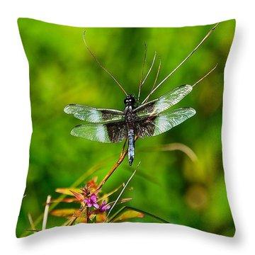 Zen Dragonfly 2 Throw Pillow