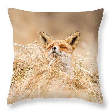 Zen Fox Series - Zen Fox 2.7 Throw Pillow by Roeselien Raimond