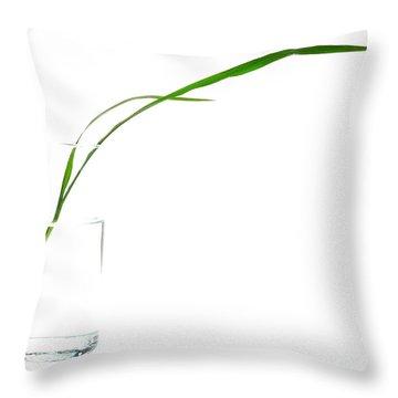 Zen Grass Throw Pillow