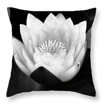 Waterlily Rising Throw Pillow