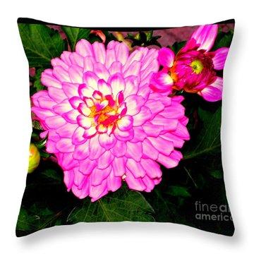Throw Pillow featuring the photograph Zennia by Greg Moores