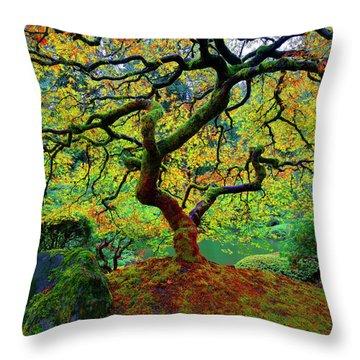 Throw Pillow featuring the photograph Zentastick by Jonathan Davison