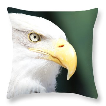 Throw Pillow featuring the photograph Zeroed In by Laddie Halupa