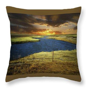 Zig Zag River Throw Pillow