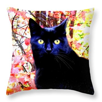 Ziggy Throw Pillow by Will Borden
