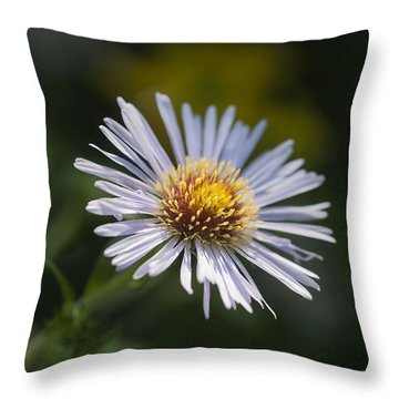 Zigzag Aster Throw Pillow