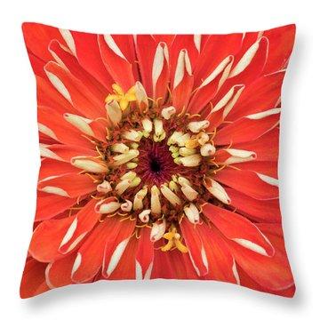 Zinnia Elegans Benarys 'giant Orange' Throw Pillow