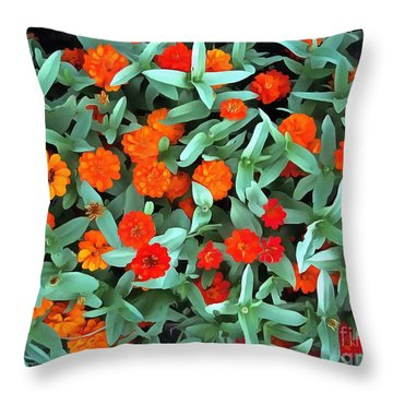 Throw Pillow featuring the photograph Zinnia Flower - Profusion Orange by Janine Riley