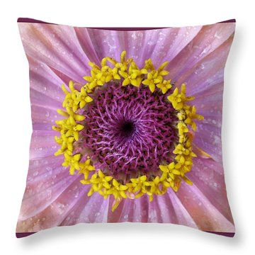 Zinnia Throw Pillow by Geraldine Alexander