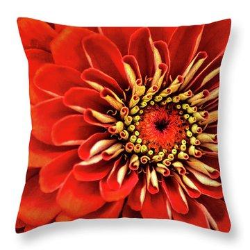 Zinnia-macro Throw Pillow