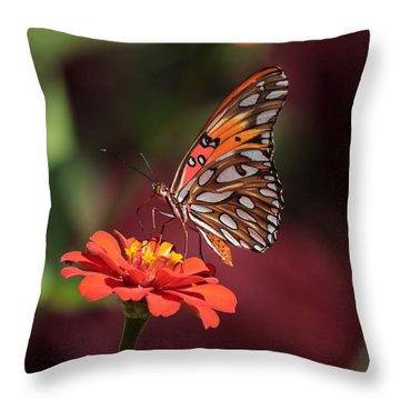 Zinnia With Butterfly 2668 Throw Pillow