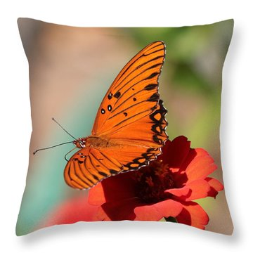 Zinnia With Butterfly 2669 Throw Pillow