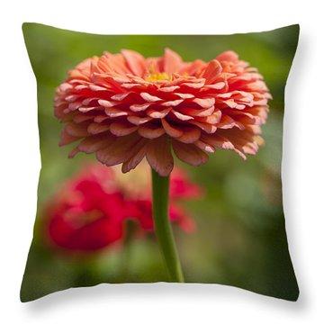 Zinnia Portrait Throw Pillow