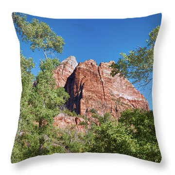 Throw Pillow featuring the photograph Zion Contrasts by John M Bailey