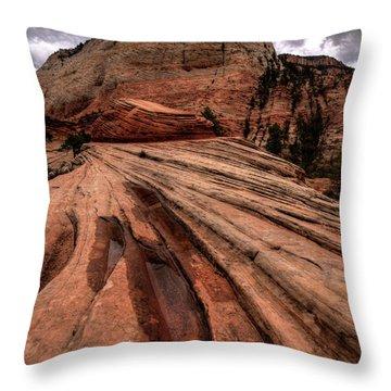 Zion Curtain Throw Pillow