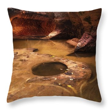 Throw Pillow featuring the photograph Zion  by Dustin LeFevre