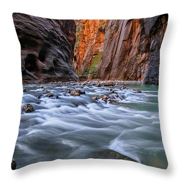 Zion Narrows Throw Pillow