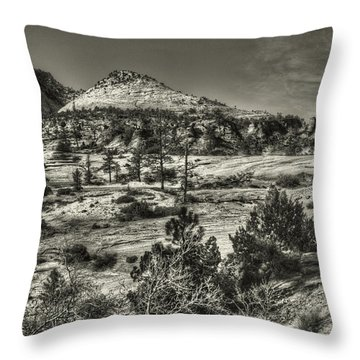 Zion National Park Along Rt 9 Throw Pillow