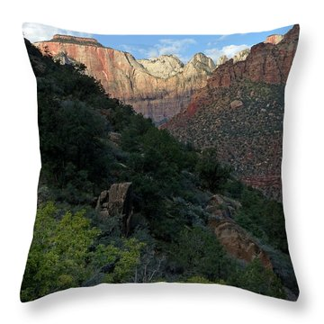 Zion National Park 20 Throw Pillow