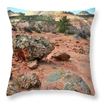 Zion Rock Garden Throw Pillow