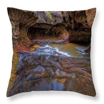 Throw Pillow featuring the photograph Zion Subway by Jonathan Davison