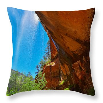 Throw Pillow featuring the photograph Zion - Under The Falls by Dany Lison