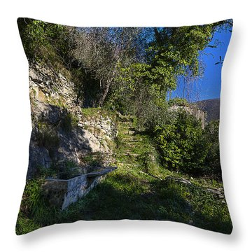 Throw Pillow featuring the photograph Zoagli Abandoned Ancient Water Basin In The Wood by Enrico Pelos