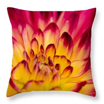 Zoey Rey Throw Pillow by Nick  Boren