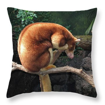 Zoo Animal Throw Pillow
