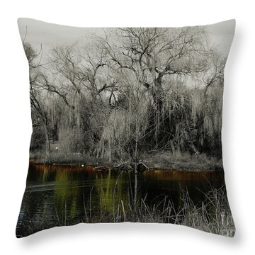Zooscape2 Throw Pillow