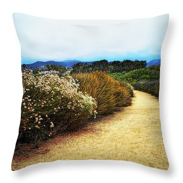 Zuma Beach Pathway Throw Pillow