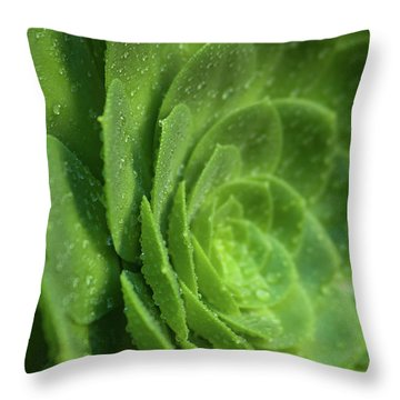 Throw Pillow featuring the photograph Aenomium_4140 by Mark Shoolery