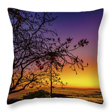 After Sunset Colors Throw Pillow