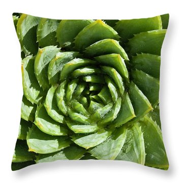 Throw Pillow featuring the photograph Aloe_polyphylla_8536.psd by Mark Shoolery