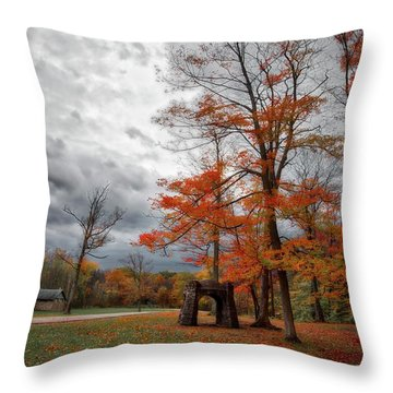Throw Pillow featuring the photograph An Autumn Day At Chestnut Ridge Park by Guy Whiteley