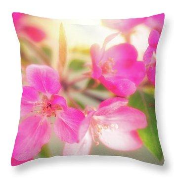 Apple Blossom 6 Throw Pillow