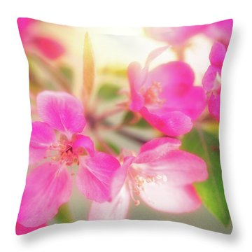 Apple Blossom 6 Throw Pillow