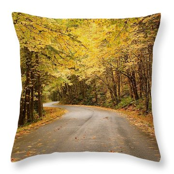 Throw Pillow featuring the photograph Autumn Drive by Brian Eberly